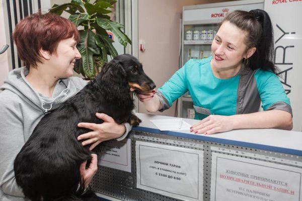 Ветеринарная клиника АртВет